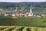 Champagne discovery tour : 251€